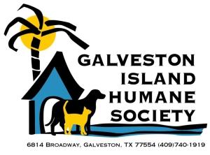 galveston-humane-society-non-profit