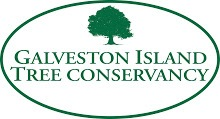 Galveston Island Tree Conservancy